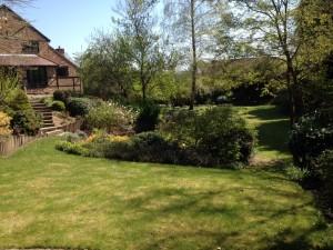 Garden Maintenance Farnham